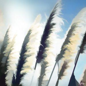 2082 Pampas Grass