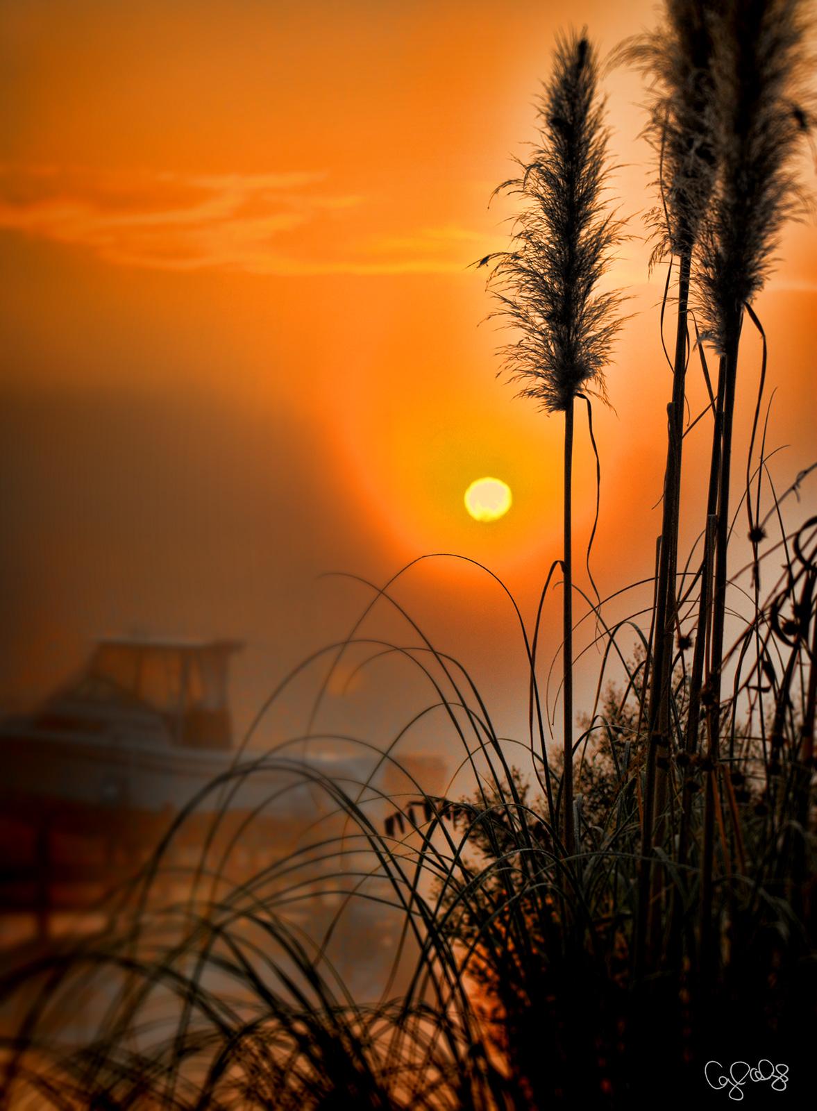 2085 Sunrise